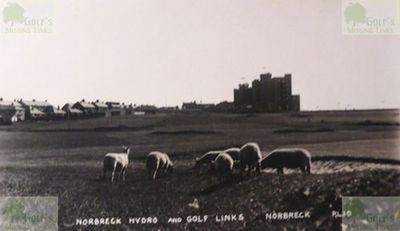 Norbreck Hydro Golf Club, North Shore, Blackpool. Sheep grazing Norbreck golf links.